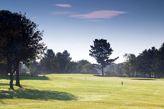 West of england amateur strokeplay think